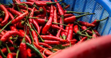Harga Cabe Rawit Merah Turun di Pasar Tradisional Purbalingga
